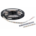 TAINIA LED 14,4W 12V/DC IP20 60pcs/1m COLD WHITE