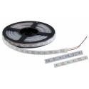 LED300 5050 12V/DC IP65 60pcs/1m COLD WHITE